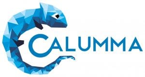 CALUMMA RISC Software GmbH