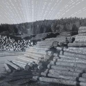 2020 04 Sägewerk Projekt Bild Final